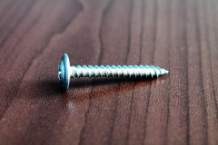 Drywall Screw Stock Image