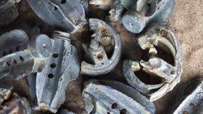 Drzazgi od Brytyjskich okopu moździerza bomb zdjęcie wideo
