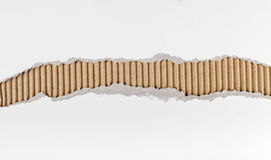 drzejący seria papierowy pasek Zdjęcia Stock