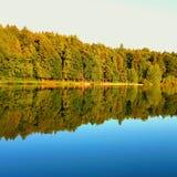 Drzew odbicie w wodzie w wieczór Zdjęcia Stock