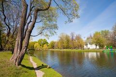 Drzew, stawowego i drewnianego pawilon w Catherine parku, Obraz Royalty Free