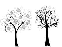 drzewa dwa Zdjęcia Royalty Free