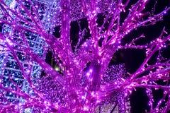 Drzewa i archways dekorowali z rozjarzonymi purpurowymi neons zdjęcia royalty free