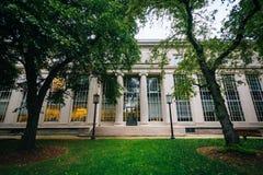 Drzewa i budynek przy Massachusetts Institute Of Technology, Zdjęcia Royalty Free