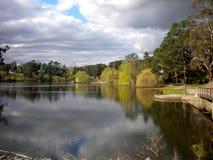 Drzewa i chmury odbicia w Daylesford jeziorze, Wiktoria, Australia Fotografia Royalty Free