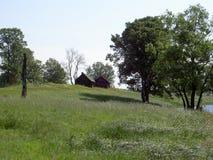 Drzewa i drewniani mali domy Obraz Royalty Free