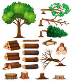 Drzewa i fiszorka drzewa ilustracja wektor