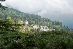 Drzewa i góry doliny Obrazy Stock