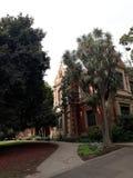 Drzewa i klasyczny architektura budynek zdjęcie stock
