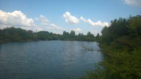 Drzewa i krzaki, woda, jezioro, spadać drzewo, połów, połowu miejsce, dopłynięcie, miejsce dla odpoczynku Obraz Royalty Free
