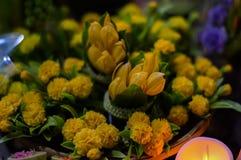 Drzewa i kwiatów modele Fotografia Royalty Free
