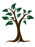 Drzewa i liści logo Zdjęcie Stock
