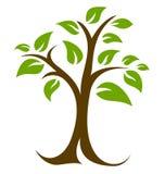 Drzewa i liści logo Fotografia Stock
