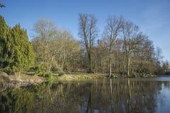 Drzewa i nieba odbicie na głębokim jeziorze obrazy stock