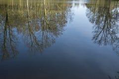 Drzewa i nieba odbicie na głębokim jeziorze zdjęcia stock
