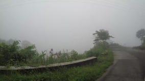 Drzewa i roślinność wzdłuż wąski wijący niewygładzonego w górzystej prowinci na mglistym dniu zbiory