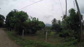 Drzewa i roślinność wzdłuż wąskiej wijącej niewygładzonej drogi w wiejskim miasteczku zbiory