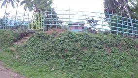 Drzewa i roślinność wzdłuż wąskiej wijącej niewygładzonej drogi w wiejskim miasteczku zbiory wideo