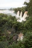 Drzewa i siklawy przy górną częścią iguazu spadają veiw od Argentina obraz stock