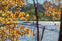Drzewa i staw w miasto parku obrazy stock