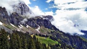 Drzewa i wiecznozieloni lasy na skłonach między Churfirsten pasmem górskim Walensee jeziorem i - kanton St Gallen, Switzer fotografia stock