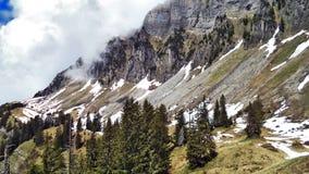 Drzewa i wiecznozieloni lasy na skłonach między Churfirsten pasmem górskim Walensee jeziorem i - kanton St Gallen, Switzer zdjęcia royalty free