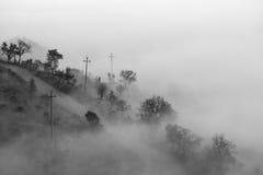 Drzewa, linie energetyczne i mgła, obrazy stock