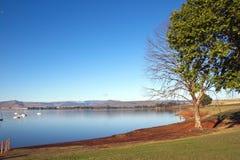 Drzewa na brzeg Midmar tama, Howick, Południowa Afryka Zdjęcie Royalty Free