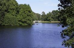 Drzewa na jeziorze Obraz Stock