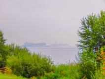 Drzewa na seashore z bardzo wielkimi statkami w odległości zdjęcie royalty free
