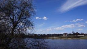 Drzewa nad wodą Zdjęcia Royalty Free