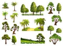 Drzewa, natura las ilustracji