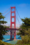 Drzewa Obramiają Golden Gate Bridge Fotografia Stock