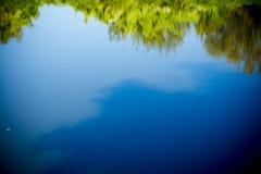 Drzewa odbicie w rzece Obraz Stock