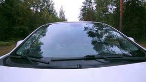 Drzewa odbijający w samochodowym okno Przedniej szyby odbicie Samochodowy jeżdżenie na wiejskiej drodze zbiory