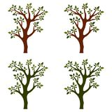 Drzewa odizolowywający z gałąź na białym tle royalty ilustracja