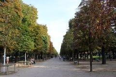 Drzewa Paryż park obraz stock