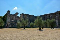 Drzewa przed grotą Di Catullo blisko Sirmione przy jeziornymi dziąsłami Zdjęcie Stock
