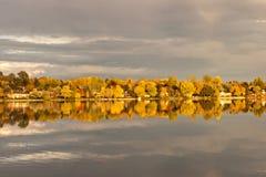 Drzewa Przez jezioro przy wschód słońca zdjęcie stock