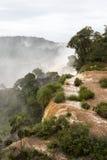 Drzewa przy górną częścią iguazu spadają veiw od Argentina obraz stock