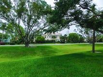 Drzewa przy Naples i droga, Floryda fotografia stock