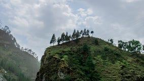 Drzewa są na górze wzgórza zdjęcie royalty free