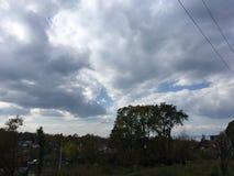 Drzewa, szarości chmurny niebo Krajobraz, wieś, wczesna jesień Zdjęcie Royalty Free