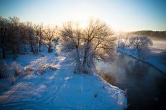 Drzewa w śniegu na mroźnym zima ranku zdjęcia royalty free