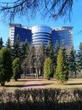 Drzewa w parku przeciw budynkowi fotografia stock