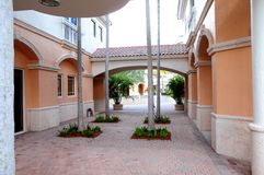 Drzewa w wejściu dla biznesów, przechują w Floryda Obrazy Royalty Free