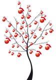 drzewa xmas Fotografia Stock