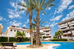 Drzewka palmowe blisko basenu na terytorium mieszkaniowy kompleks Zdjęcie Royalty Free