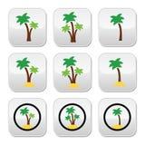 Drzewka palmowe, egzotyczni wakacje na plażowych kolorowych ikonach ustawiać Zdjęcia Royalty Free