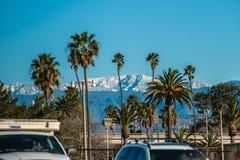 Drzewka palmowe i śnieżni szczyty Fotografia Royalty Free